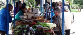 00_Puestos de venta_miel-y-vegetales-1