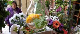 00_Puestos-de-flores-8